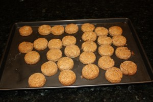 Whole Wheat Honey Biscuits