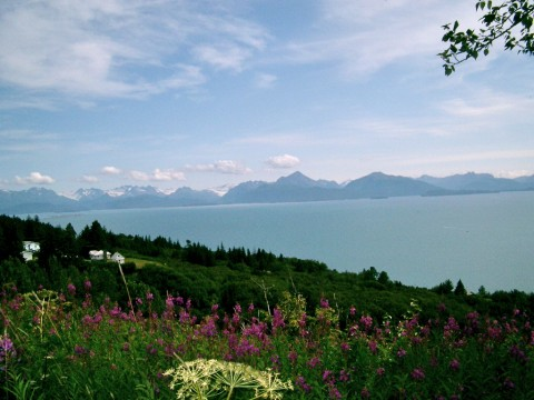 Beautiful Kachemak Bay Alaska